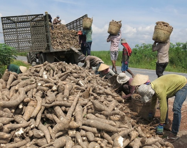 Trung Quốc sang Campuchia tìm bạn, thế mạnh tỷ USD Việt lao dốc - 2