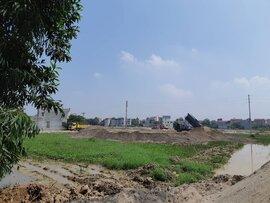 Nữ giám đốc trúng đấu giá 205 lô đất tại Bắc Ninh lên tiếng