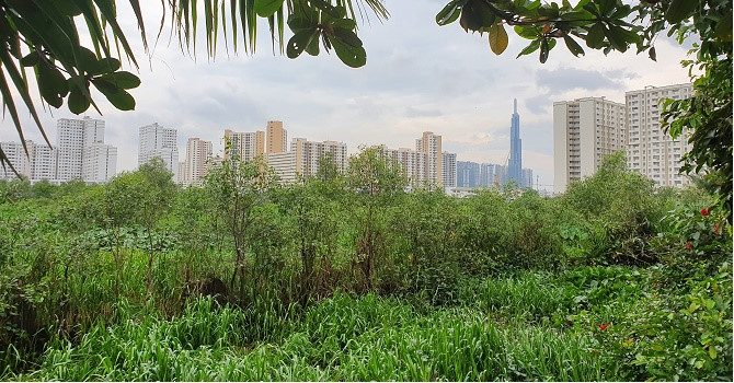 TP.HCM kiến nghị Thủ tướng chấp thuận chủ trương quy hoạch khu đô thị 21.000ha