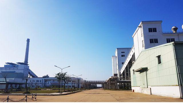 Quảng Nam công khai 22 doanh nghiệp nợ thuế