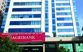 Ngân hàng Nhà nước giao người điều hành hội đồng thành viên Agribank