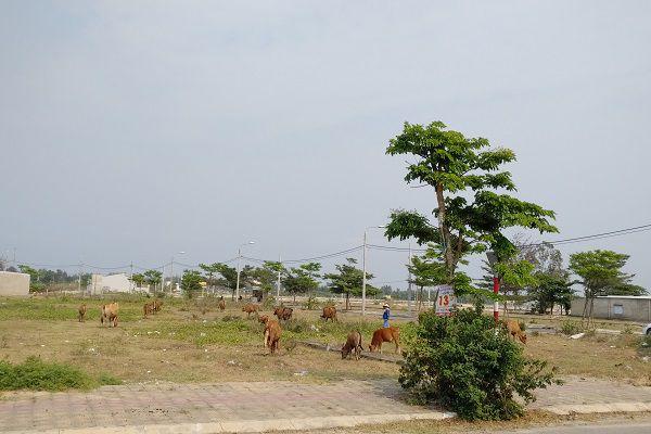 Thị trường BĐS Đà Nẵng: Bóc mẽ chiêu