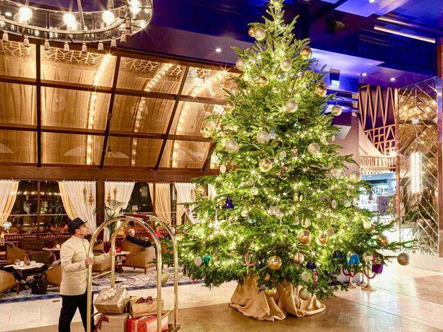 Cây Giáng sinh đắt nhất thế giới phủ kim cương trị giá 15 triệu USD - 1