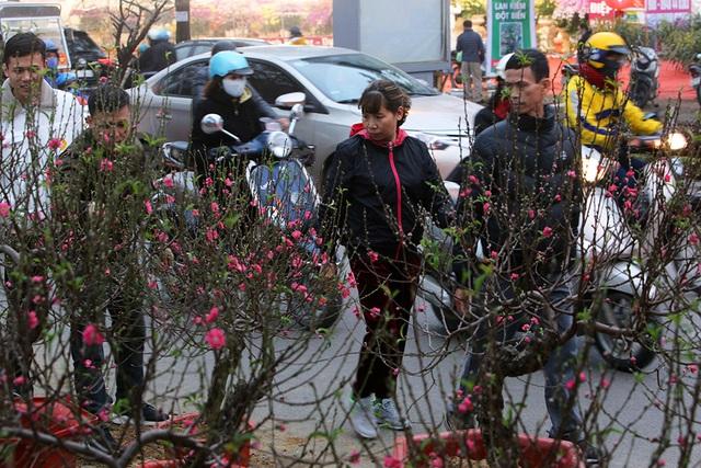 Sôi động chợ hoa Tết lớn nhất Hà Nội - 2