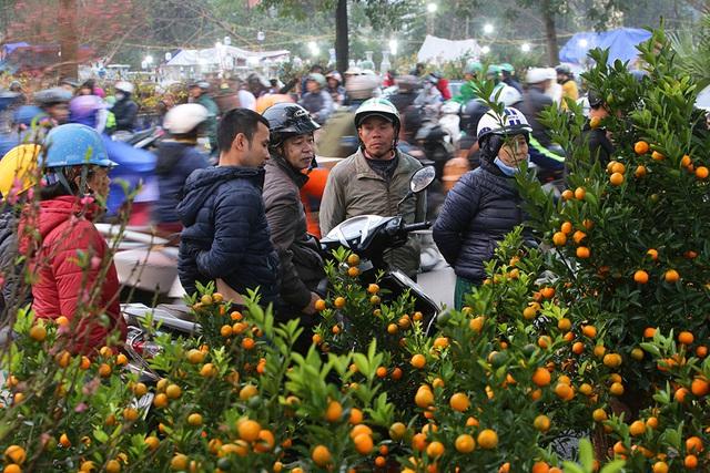 Sôi động chợ hoa Tết lớn nhất Hà Nội - 7