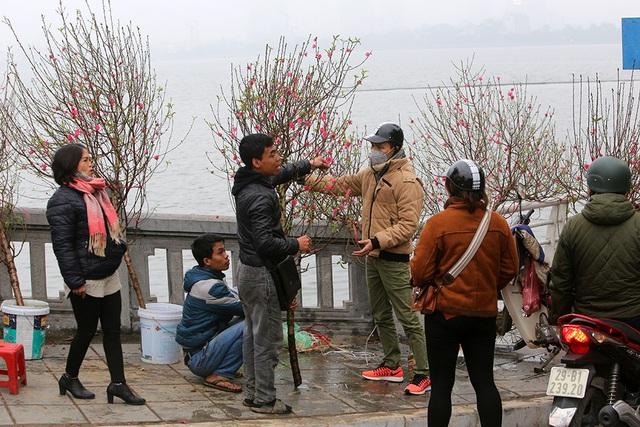 Sôi động chợ hoa Tết lớn nhất Hà Nội - 10