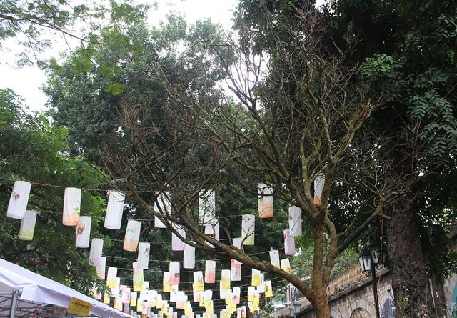 Đại gia chi hơn 3 tỷ đồng vẫn không mua nổi cây Hoàng mai 120 tuổi - 2