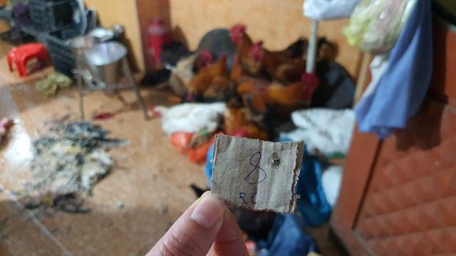 Hải Dương: Hốt bạc từ dịch vụ mổ gà thuê ngày Tết - 3