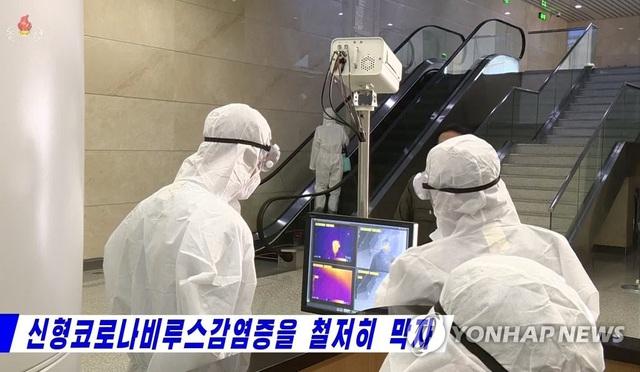 Những lá chắn phòng vệ giúp Triều Tiên đứng vững trước virus corona - 3