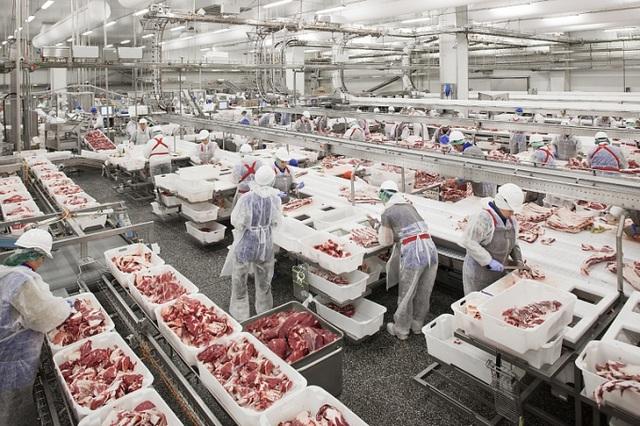 50.000 tấn thịt lợn đổ về, dân Việt được ăn lợn giá rẻ - 1