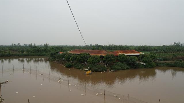 Khi có ngập lụt, dự án sân golf cạnh sông Đuống ứng phó như thế nào? - 2