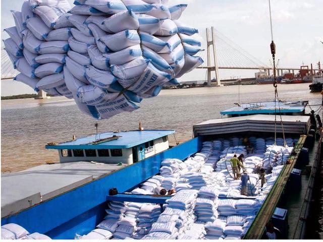 Thủ tướng nhắc nhở một số bộ, ngành về việc tham mưu xuất khẩu gạo - 1
