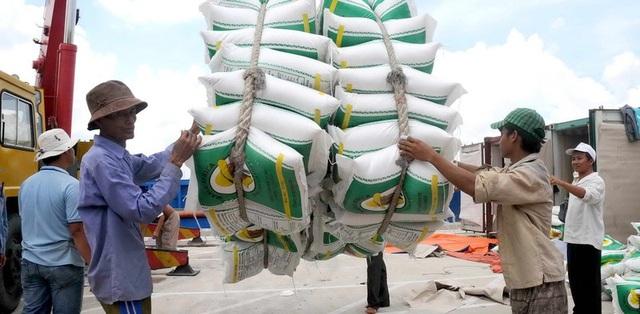 Gạo đầy kho, DN và các tỉnh đề xuất cho xuất khẩu trở lại - 2