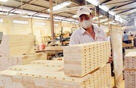 Chỉ trong 1 tháng, bốn ngành xuất khẩu chủ lực mất 600 triệu USD vì Covid-19