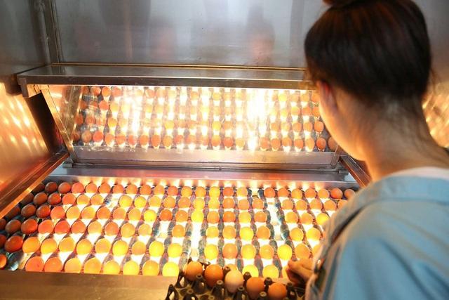 """""""Ông trùm"""" ngành trứng, thịt gặt lãi tăng gấp 17 lần giữa dịch Covid-19 - 2"""