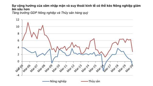 Việt Nam có nguy cơ tăng trưởng âm, điều mà khủng hoảng 2009 chưa xảy ra - 4