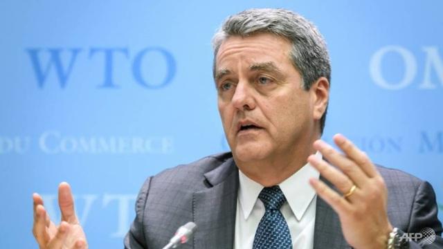 Tổng giám đốc WTO đột ngột từ chức - 1