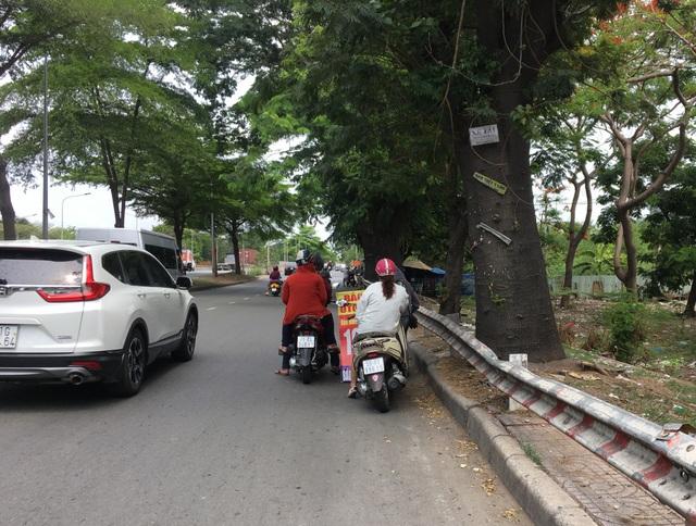 Dân cấp tập đi mua bảo hiểm ô tô, xe máy, giới kinh doanh hốt bạc - 4