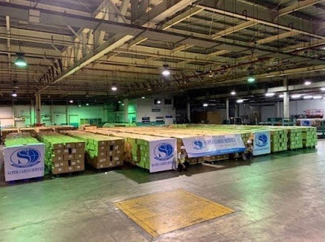 Xuất khẩu 5 triệu sản phẩm bảo hộ y tế qua Mỹ, 8 máy bay mới chở hết - 2