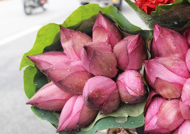 Hà Nội: Hoa sen xuống phố, thơm ngát cả vùng trời! - 2