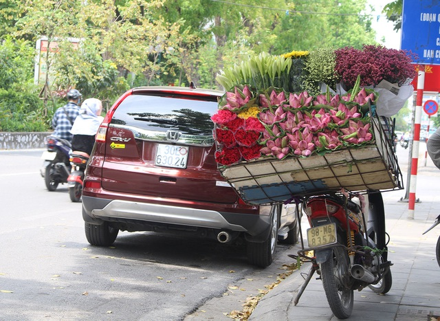 Hà Nội: Hoa sen xuống phố, thơm ngát cả vùng trời! - 3