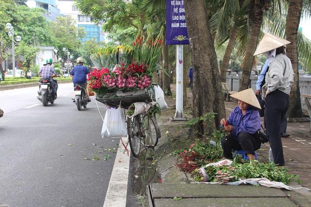 Hà Nội: Hoa sen xuống phố, thơm ngát cả vùng trời! - 10
