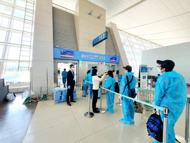 Chuyến bay đầu tiên đón hơn 300 người Việt tại vùng dịch Hàn Quốc về nước - 1