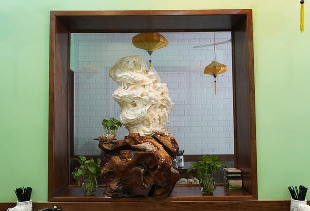 Chiêm ngưỡng bức Cửu Long Tranh Châu bằng vỏ sò nghìn năm tuổi - 10