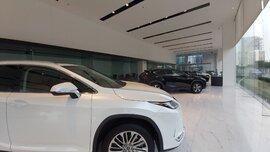 EuroCham đề nghị giảm 50% phí trước bạ với cả ô tô nhập