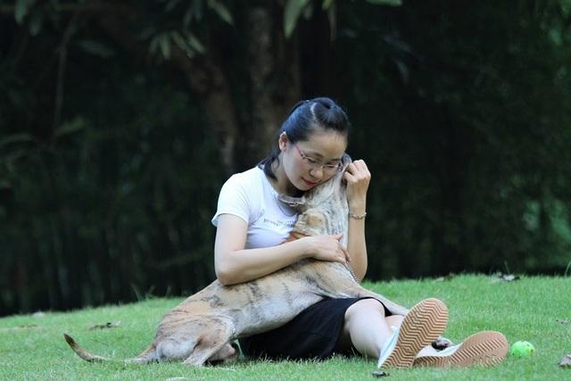 Khuyển vương 300 triệu đồng, thương vụ chó Phú Quốc đắt nhất Việt Nam - 5