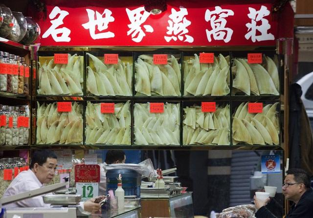 """Vây cá mập có gì khiến dân Trung Quốc """"ghiền"""" đến vậy? - 1"""