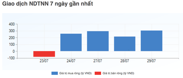 Ai đã âm thầm chi tiền khi chứng khoán Việt bị bán tháo? - 2
