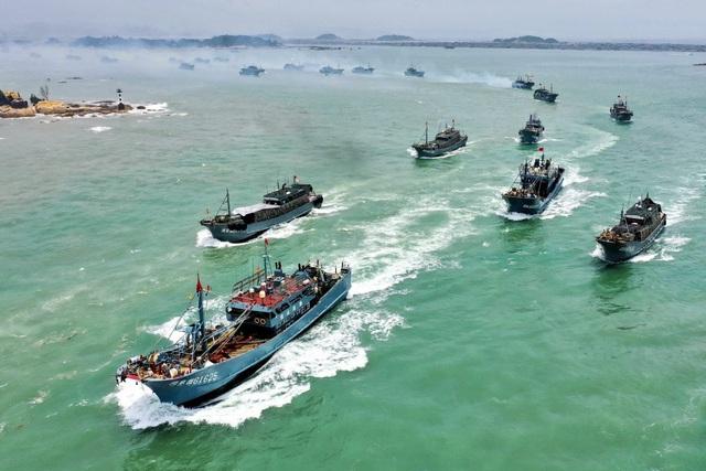 Trung Quốc cấm đội tàu cá đông đảo đánh bắt mực trên vùng biển quốc tế - 1