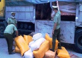 Bắt giữ xe ô tô tải chở cả tấn ruốc không rõ nguồn gốc xuất xứ