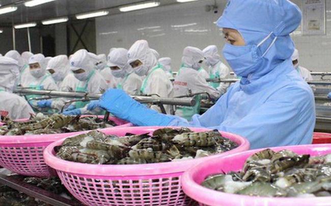 Việt Nam xuất siêu gần 11 tỷ USD trong mùa đại dịch covid-19