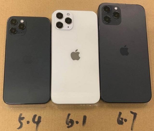 Lộ diện tên gọi chính thức của 4 phiên bản iPhone 12 - 2