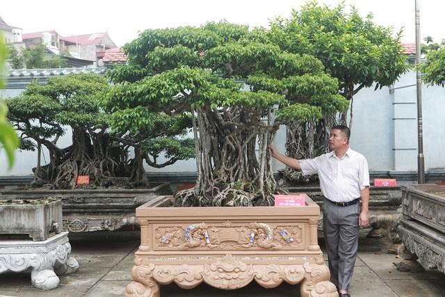 """Sanh cổ """"Ngũ long tranh châu"""" mua từ năm 1996 với giá 100 cây vàng - 1"""