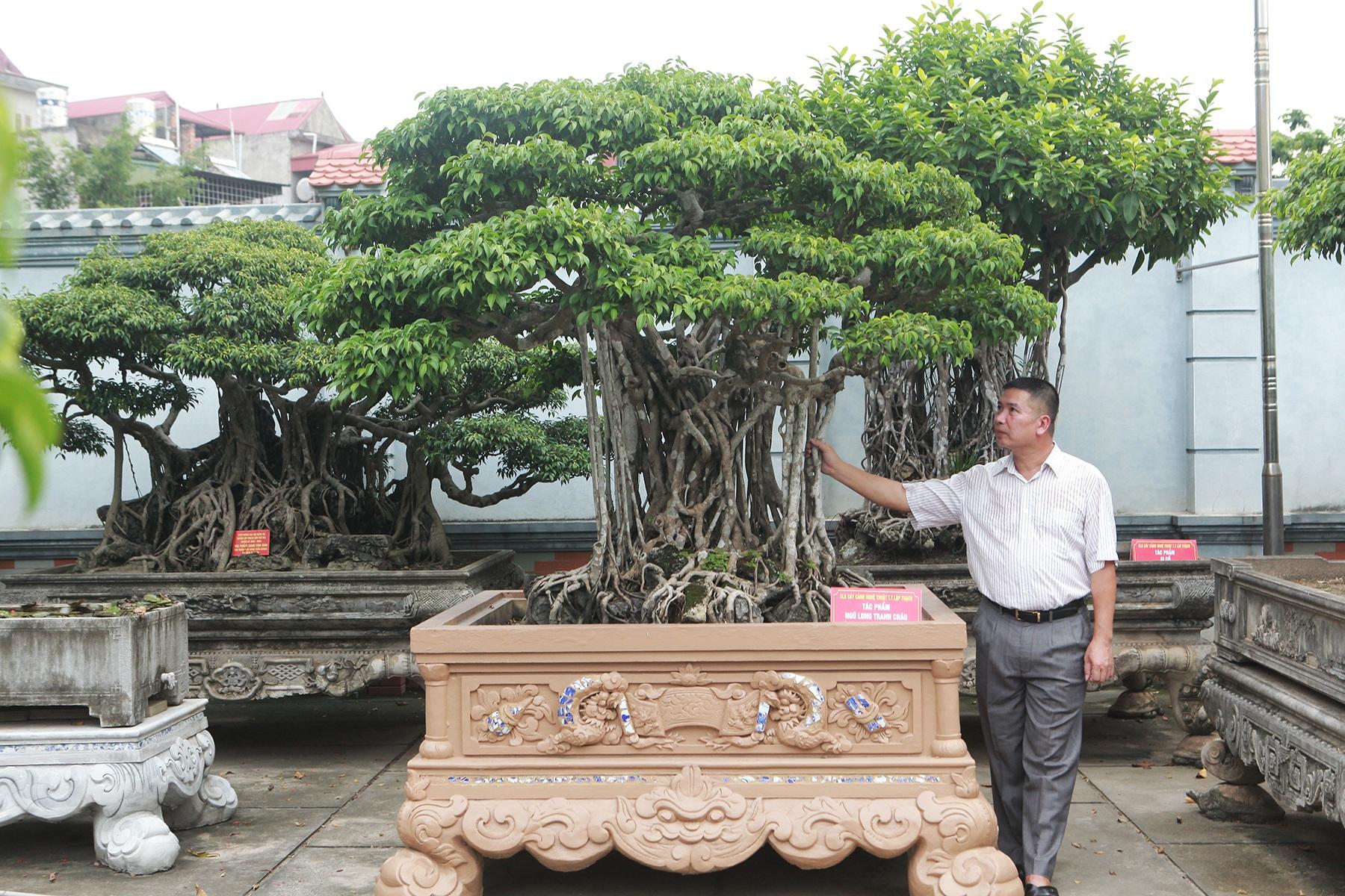 """Sanh cổ """"Ngũ long tranh châu"""" mua từ năm 1996 với giá 100 cây vàng"""