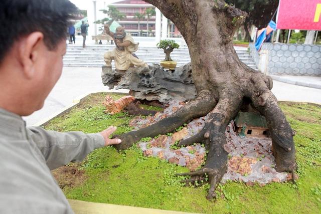 Sửng sốt với cây khế cổ dáng Long đẹp nhất Việt Nam có giá 5 tỷ đồng - 7