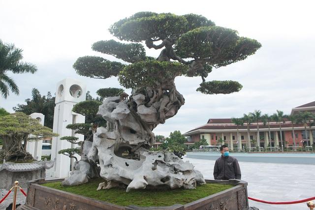 Ngỡ ngàng với huyền thoại sanh cổ ký đá kỳ vĩ nhất Việt Nam - 4