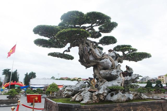 Ngỡ ngàng với huyền thoại sanh cổ ký đá kỳ vĩ nhất Việt Nam - 10