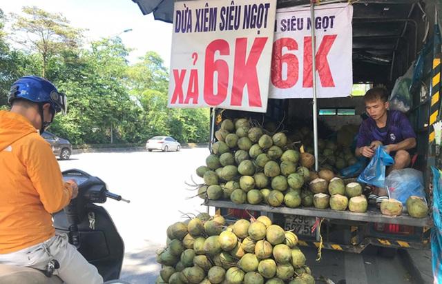 """Hà Nội: Dừa xiêm bán """"giá rẻ như cho"""", người bán tiết lộ nguyên nhân - 1"""