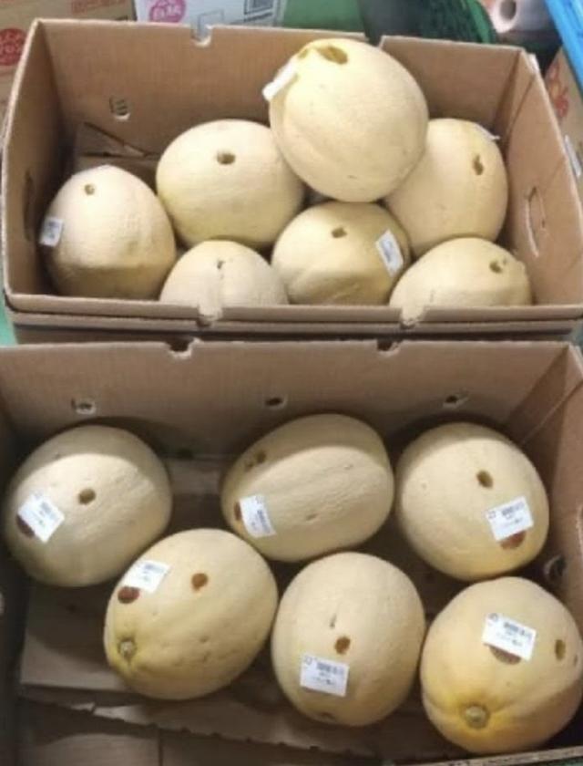 Người phụ nữ bị bắt giữ vì chọc thủng 13 quả dưa trong siêu thị - 1