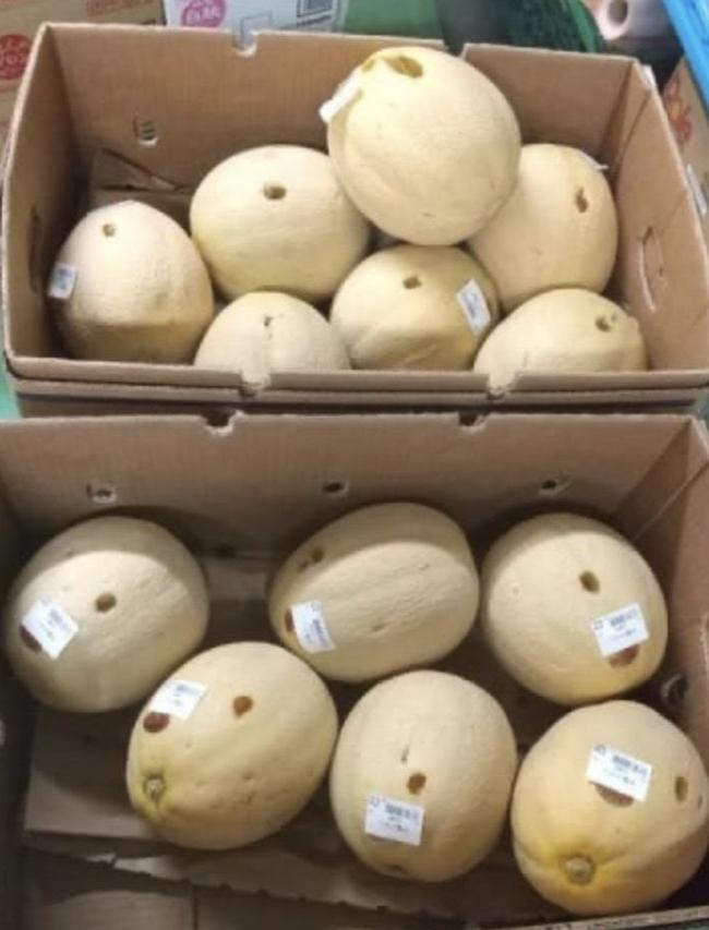 Người phụ nữ bị bắt giữ vì chọc thủng 13 quả dưa trong siêu thị