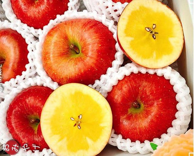 Tiết lộ về loại táo trong như mật ong, nhà giàu đổ tiền tỷ mua ăn - 4