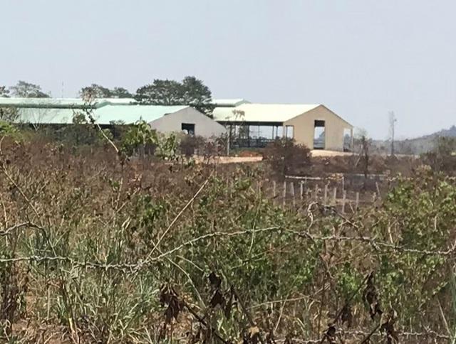 Người dân ngã ngửa trước sự biến hóa của dự án nuôi bò 2.600 tỷ đồng  - 1