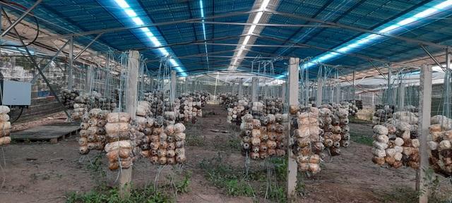 Đắk Lắk: Điện mặt trời mái nhà kiểm tra đến đâu phát hiện vi phạm đến đó - 2