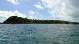 Tránh dịch Covid-19 kiểu đại gia: Chi tiền mua đảo hoang, vào rừng