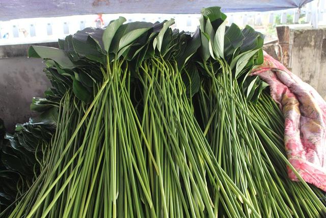 Hồ hởi thu hoạch ngọc xanh, dân Hà Nội kiếm tiền triệu mỗi ngày dịp Tết - 5