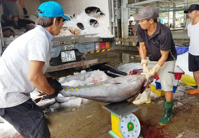 Giáp Tết, đơn hàng cá ngừ đại dương đi Mỹ, châu Âu... tăng vọt - 1
